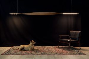 Twisted Oak Pendent Light. A collaboration with Hillam Architects- Perth, Western Australia